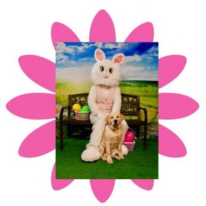 Pet Photo with the Easter Bunny