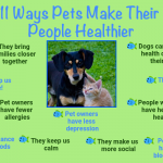 Fun Pet Facts and Resources for Pet Owners